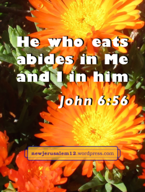 John 6:56