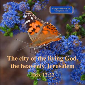 #NewJerusalem